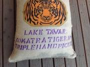 Sumatra Tiger  Blue Eye (200g)