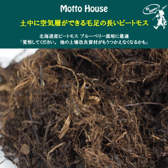 北海道産【ブルーベリーの地植えに時に混ぜる土壌改良資材】土中に空気層ができる毛足の長いピートモス ブルーベリー栽培に最適