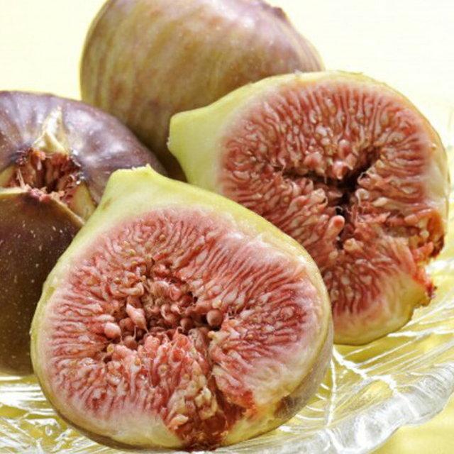 早生日本種 蓬莱柿