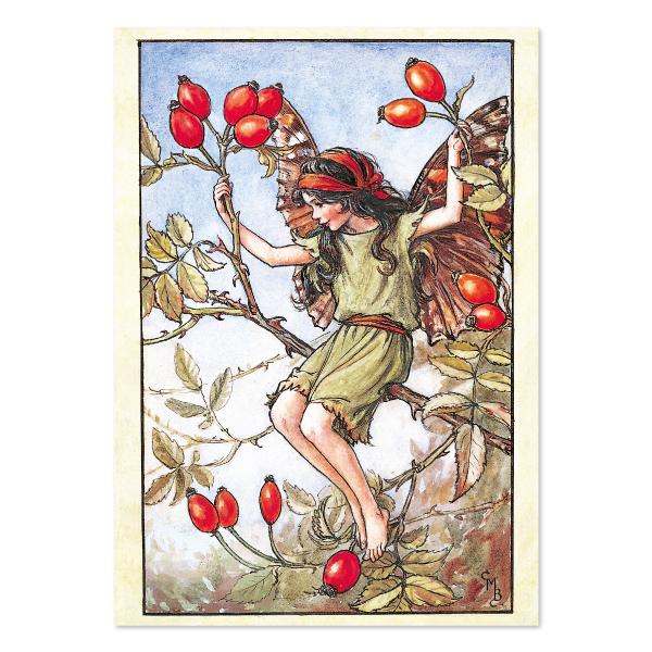 FLOWER FAIRIES ポストカード<The Rose Hip Fairy>FF-141