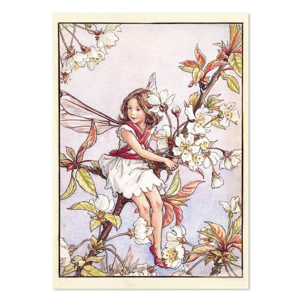 FLOWER FAIRIES ポストカード<The Wild Cherry Blossom Fairy>FF-143