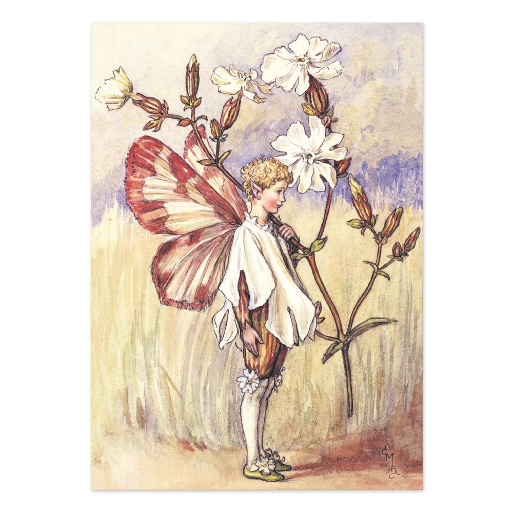 FLOWER FAIRIES ポストカード<White Campion Fairy>