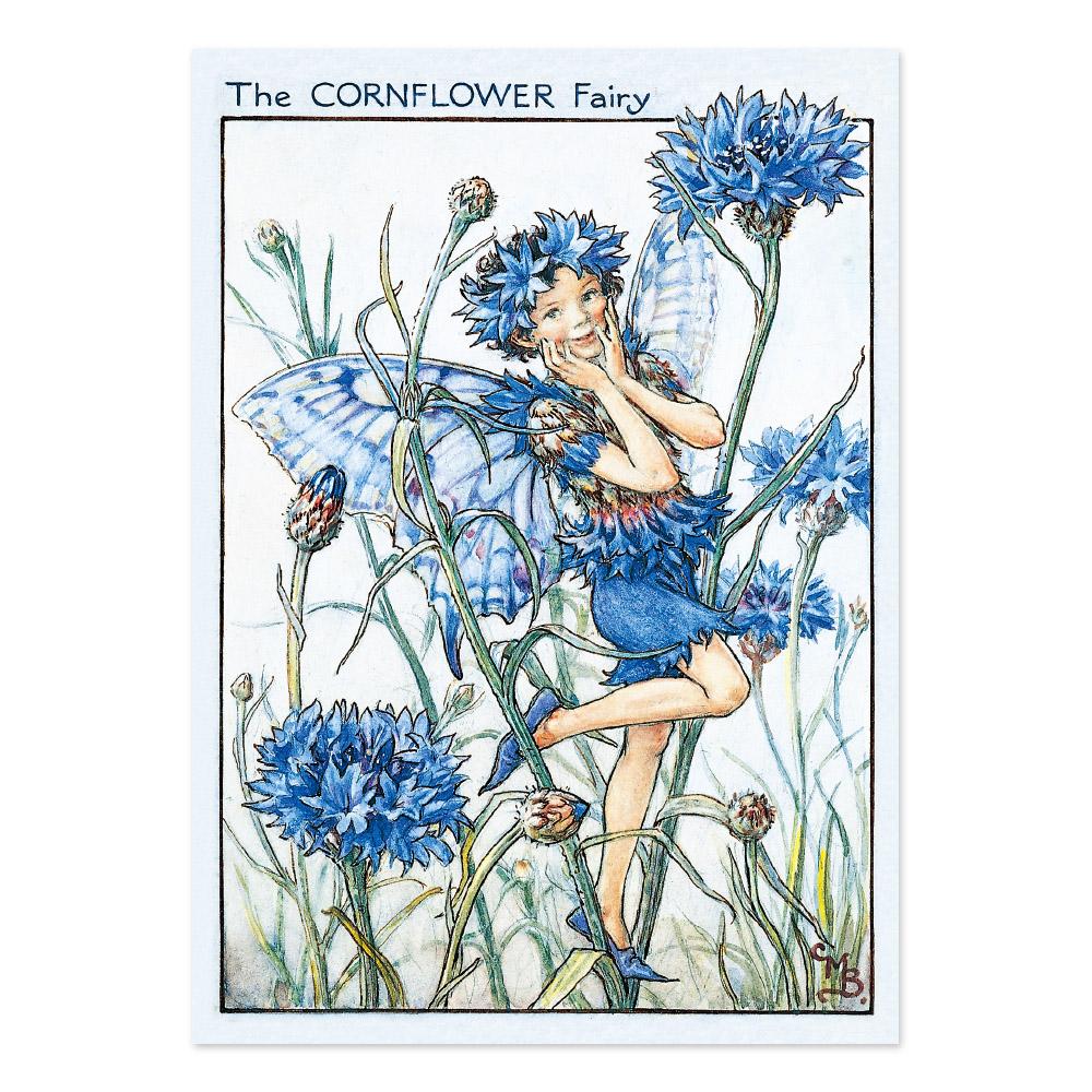 FLOWER FAIRIES ポストカード<Cornflower Fairy>