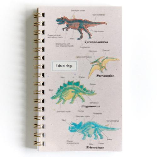 STUDY HOLIC スリムリングノート<古生物学>ST-048