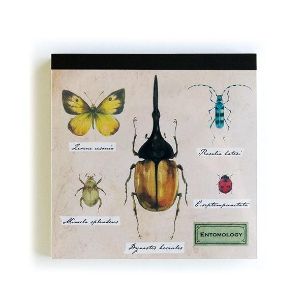 STUDY HOLIC メモパッド・スクエア<昆虫学>ST-061