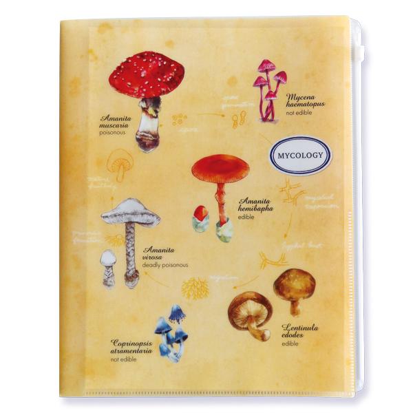 STUDY HOLIC A4ジップファイル<菌類学>ST-081
