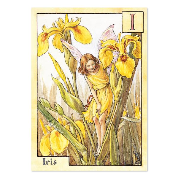 FLOWER FAIRIES ポストカード<The Iris Fairy>FF-140