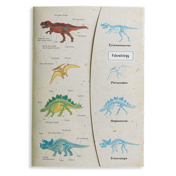 STUDY HOLIC A5ノート<古生物学>ST-138