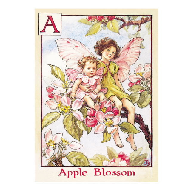 FLOWER FAIRIES ポストカード<Apple Blossom Fairies>