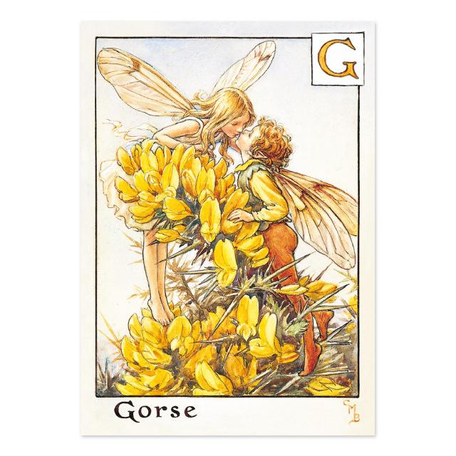 FLOWER FAIRIES ポストカード<Gorse Fairy>FF-026