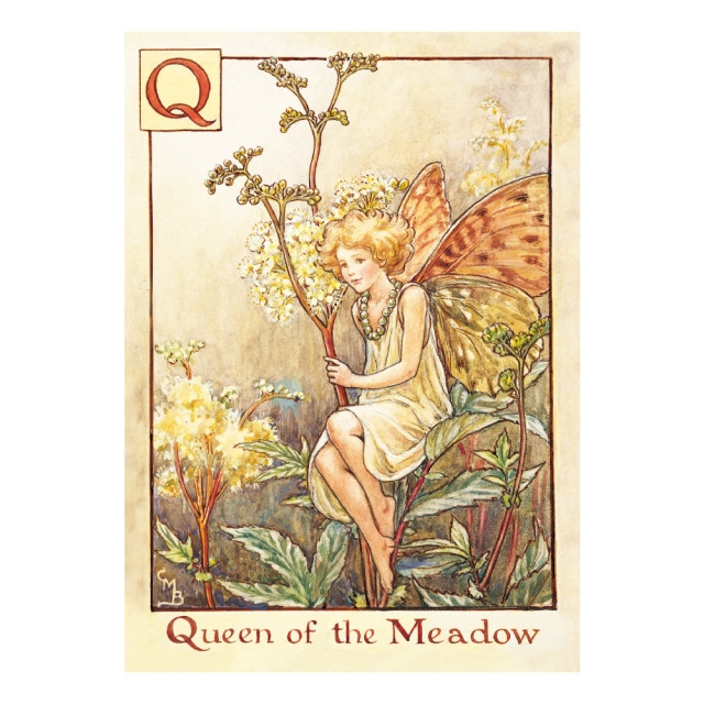 FLOWER FAIRIES ポストカード<Queen of the Meadow Fairy>