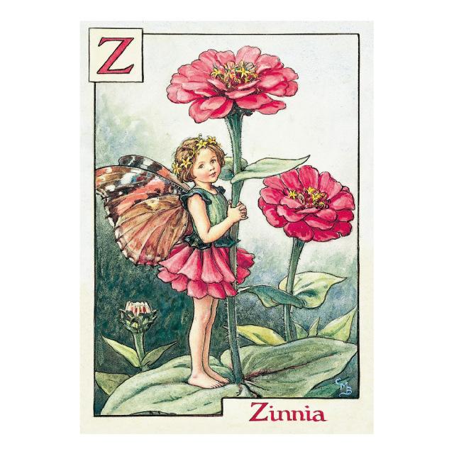 FLOWER FAIRIES ポストカード<Zinnia Fairy>