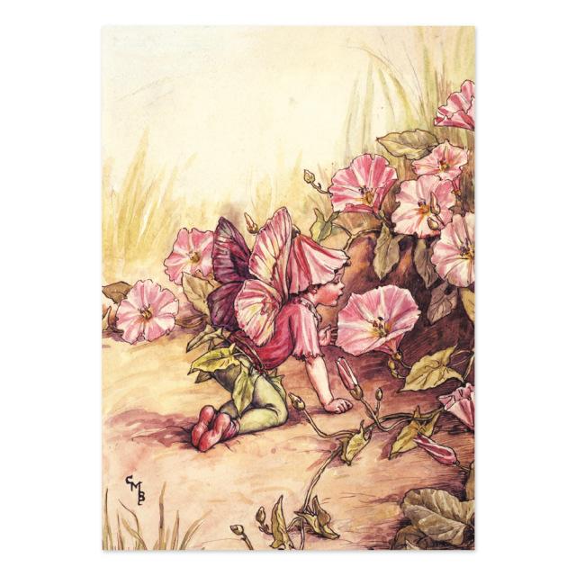 FLOWER FAIRIES ポストカード<Convolvulus Fairy>