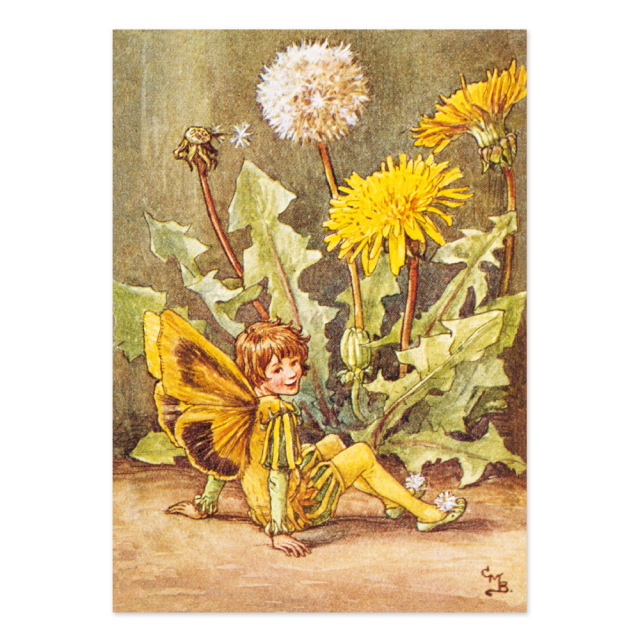 FLOWER FAIRIES ポストカード<Dandelion Fairy>