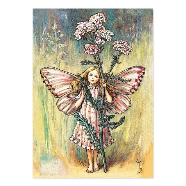 FLOWER FAIRIES ポストカード<Yarrow Fairy>