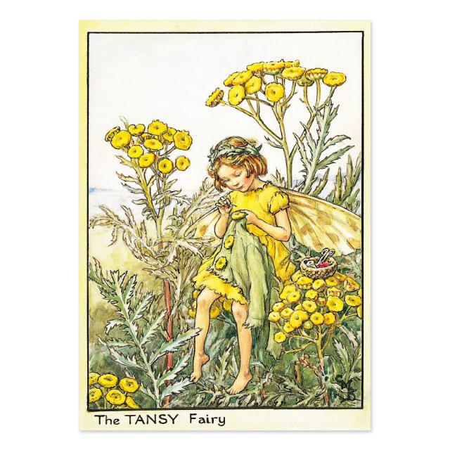 FLOWER FAIRIES ポストカード<The Tansy Fairy>