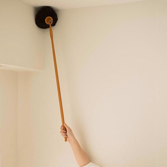 馬毛の天井ブラシ