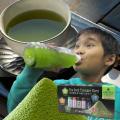 【メール便送料無料】茶の種子お試し5点セットミニ