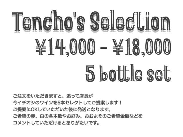 <店長's セレクション> ワイン5本セット