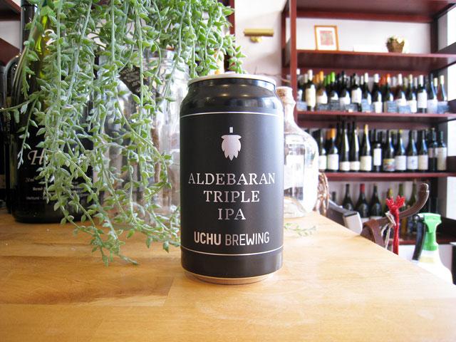 うちゅうブルーイング ALDEBARAN アルデバラン (缶)350ml (※送料無料対象外) (クール便必須)