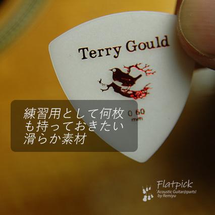 #0902  【フラットピック】 Terry Gould GP-TG-R/06 三角型 厚さ0.6mm ノイズレス ベーシック 送料160円ポスト投函
