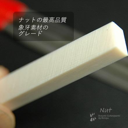 #2404  【ナット】 象牙  6mmx45mmx10mm