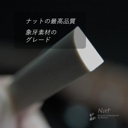 #2412  【ナット】 象牙  カーブ  6mmx55mmx12mm <送料160円ポスト投函>