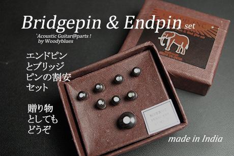 #3019  【ブリッジピン】 BEP-200/RW/E エンドピン付8本セット