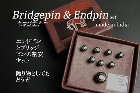 #3020  【ブリッジピン】 BEP-200/RW/R エンドピン付8本セット