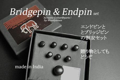 #3021  【ブリッジピン】 BEP-200/EB/P エンドピン付8本セット