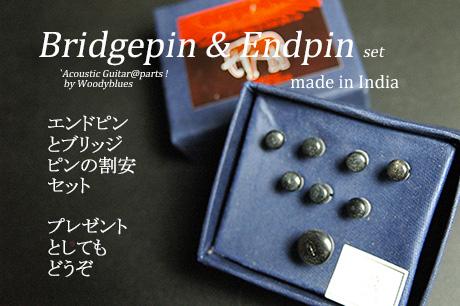 #3025  【ブリッジピン】 BEP-200/HN/P エンドピン付8本セット