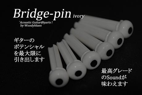 #3037  【ブリッジピン】 象牙  黒ドット 6本セット