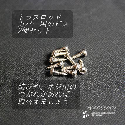 ロッドカバー用ビス TK-01 ニッケル 2個セット メンテナンス サビ交換 ネジ山潰れ
