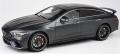 [予約]【お1人様5個まで】香港 トイイースト 特注モデル 1/18 メルセデス AMG GT63S マットグレー LHD レジン製