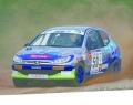 [予約]ixo (イクソ) 1/43 プジョー 206 XS 2006年Rallye Terre des Cardabelles 1位 #50  S. Ogier/J. Ingrassia