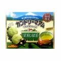 静岡限定 カントリーマアム 深蒸し緑茶(個包装16枚入)(別途クール代金324円)