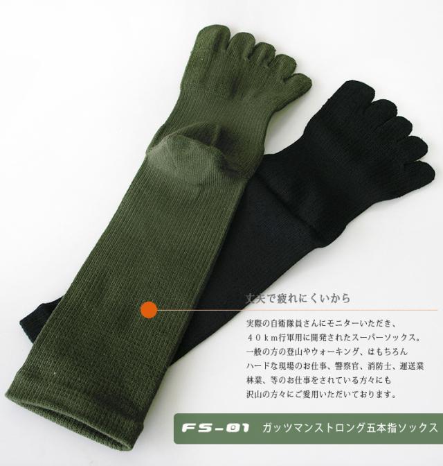 FS-01