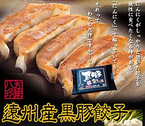 黒豚餃子 14個入(14個×1P)【浜松餃子の五味八珍】