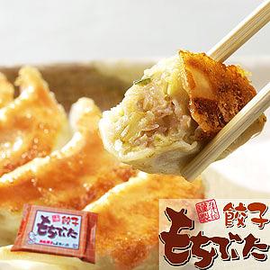 浜松もちぶた餃子 14個入(14個×1P)【浜松餃子の五味八珍】