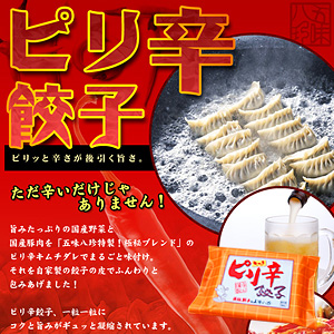 ピリ辛餃子(キムチ餃子) 14個入(14個×1P)【浜松餃子の五味八珍】