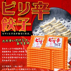 ピリ辛餃子(キムチ餃子) 280個入(14個×20P)【浜松餃子の五味八珍】