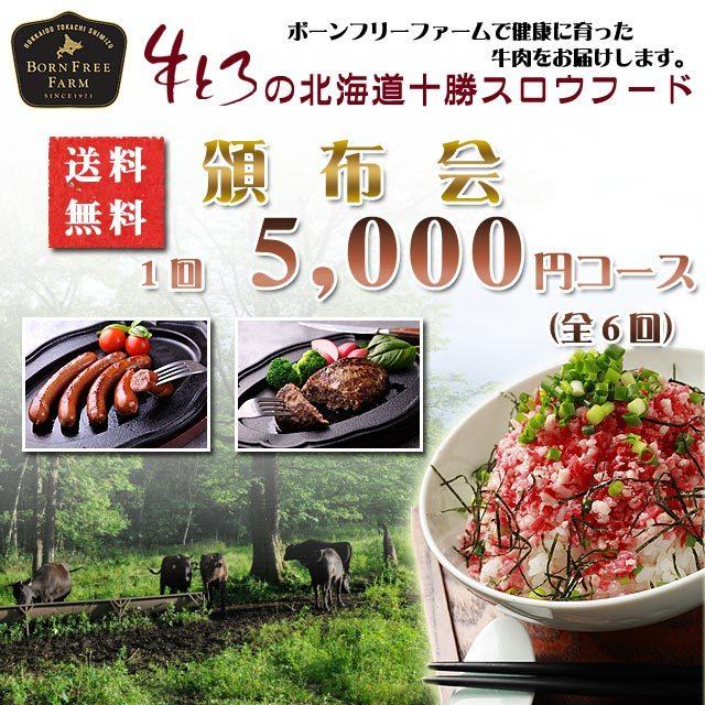 頒布会5000円コース ×全6回
