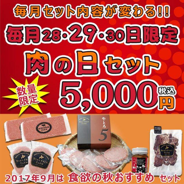 肉の日セット【1709】