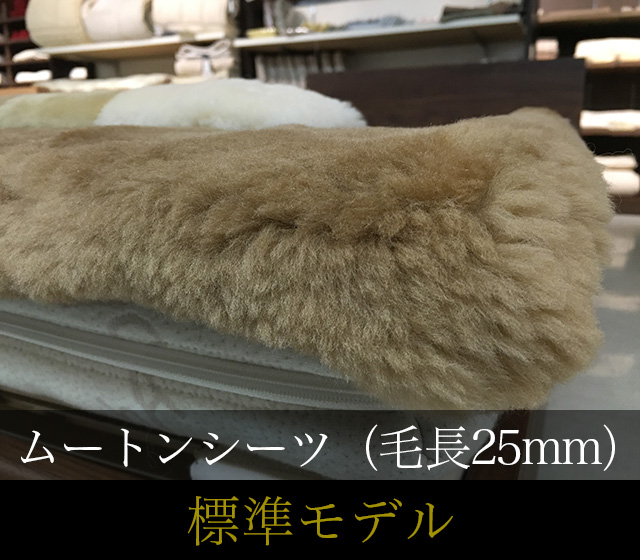 ムートンシーツ 標準モデル 毛長25mm シングルサイズ【お手入ブラシ付】