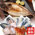 S-51_お魚セットA