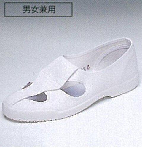 E10 ナガイレーベン(Naway)男女兼用制電靴