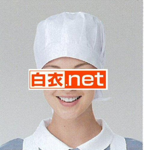 EP511 看護帽子(2枚組)