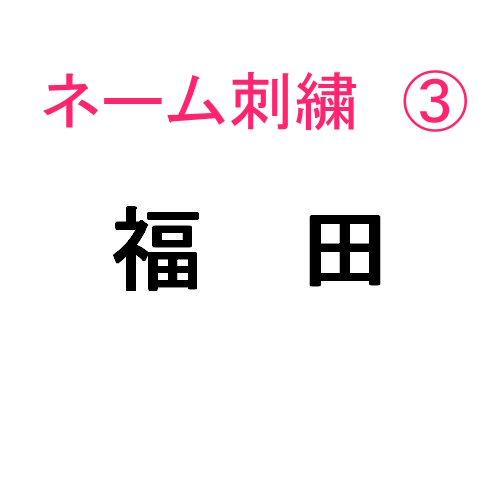 ネーム刺繍3(,個人名・名字 日本語)