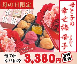 【送料無料】母の日限定ギフト☆幸せ梅母子詰合せ☆特製赤重箱・風呂敷包み・カード付
