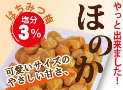 【極うす塩梅干】小粒南高梅 3%梅ほのか 500g 簡易包装